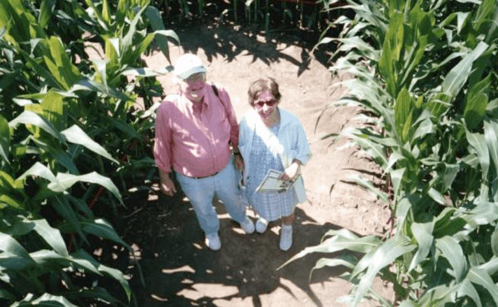 Bob & Ann